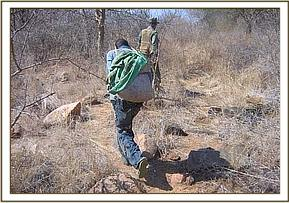 Arrested poacher carrying confiscated bush-meat
