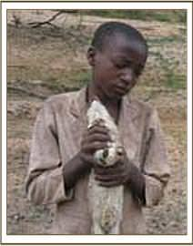 10 year old with dead hyrax