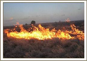 The Ndara plains on fire