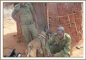 Ithumba and dog unit track a poacher to his home