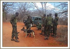 Rangers with a tracker dog at Ngiluni area