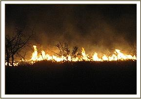 A bush fire in Tsavo West NP