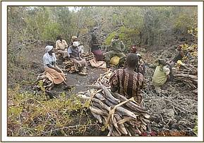 Arrests for illegal wood collection at Kenzili