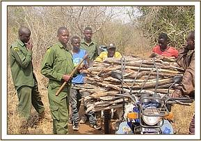 Arrested loggers,with motorbikes