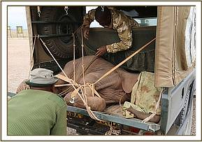 Pare being loaded onto the vehicle during his rescue