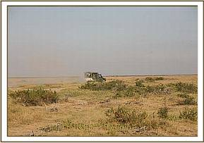 A KWS vehicle drives the team & orphan back to the airstrip