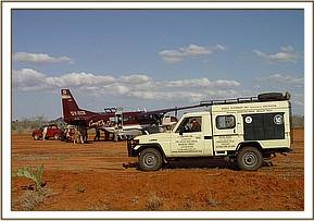 The calf is loaded onto the aircraft ready to be flown to the Nairobi Nursery