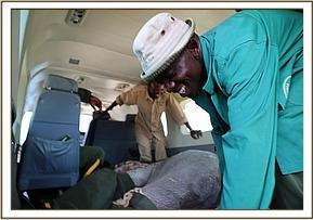 Rückflug nach Nairobi