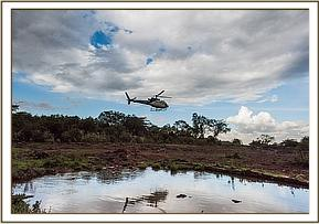 Helicopter landing at the Nairobi Nursery