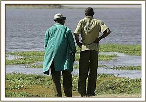 Edwin and Permanus waiting at the swamps edge to rescue the calf from Amboseli