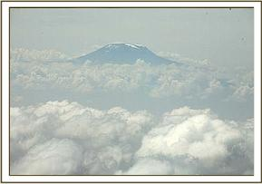 Mt Kilimanjaro as seen from the rescue plane en route to collect the calf.jpg