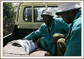 Stephen and Felix ride in the back of the landcruiser with the rescued elephant calf