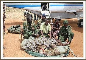 The KWS Rangers who helped rescue the orphan pose for a picture before the baby is flown to the Nursery