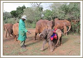 Barsilinga playing with the orphans & keepers