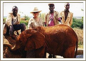 Salama with Daphne Sheldrick and Keepers