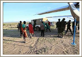 The calf arrives at the airstrip