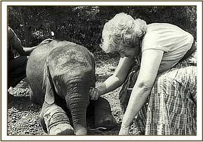 Olmeg with Daphne Sheldrick