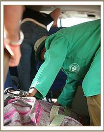 Checking on Kilaguni during the flight.