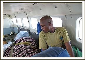 Amos checks on the calf during the flight.jpg