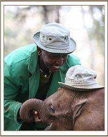 Mutara and keepers playing with her
