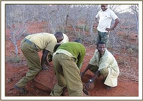 The DSWT team capture the orphan