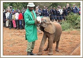 Mashariki having a bottle of milk at visiting