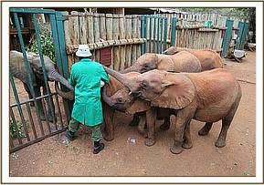 Maramoja being comforted by the other orphans