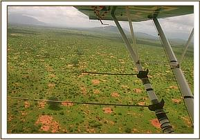 Flying over a plain looking for wildlife