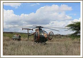 The helicopter is called to help locate the elephant