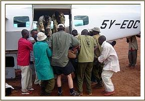 The calf is loaded into the aircraft