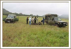 The surveillance team taking samples from a buffalo