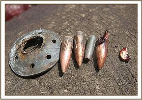 Bullet heads and fragments