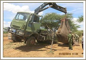 Even this large truck struggled with the size of the elephant