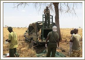 A cheetah was captured by the KWS station in community land