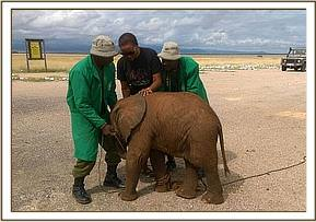 The DSWT Keepers arrive