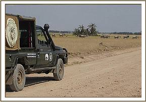The Amboseli Mobile Vet Team