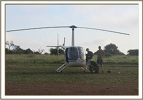 The helicopter is used to transport the gazelles