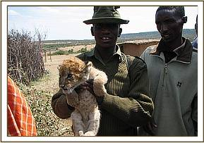The first cub