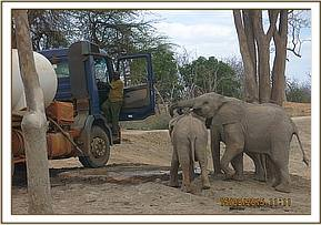 The Vet team are greeted by the orphans
