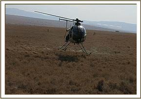 Helicopter used in the capturing process