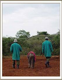 Narripi walking with members of his new family