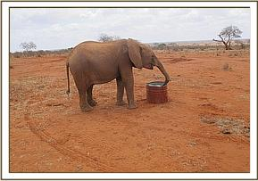 Kenia drinking water