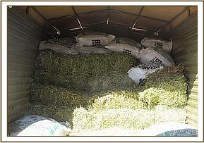 Truck full of Lucerne for the orphans