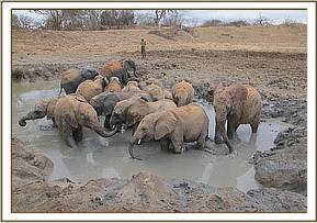 The orphans in the mudbath