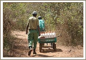 The Keepers taking milk to the orphans