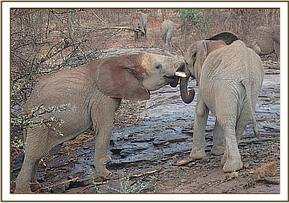 Kithaka and Lemoyian play on the rocks