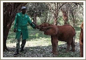 Orwa in the bush with a keeper