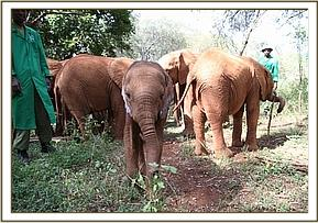 Kithaka out with the other orphans