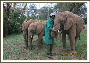 Murera talking to her keeper today