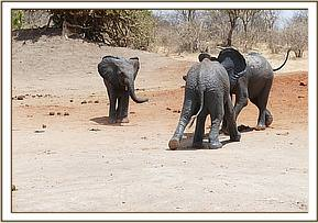Garzi tackles Kithaka as Lemoyian watches